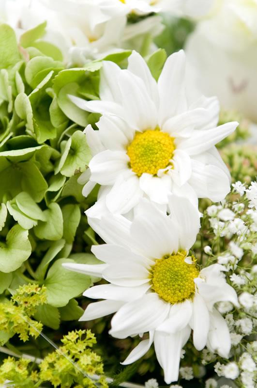 Celý svadobný deň je plný kvetov najkrajšiu kyticu má nevesta